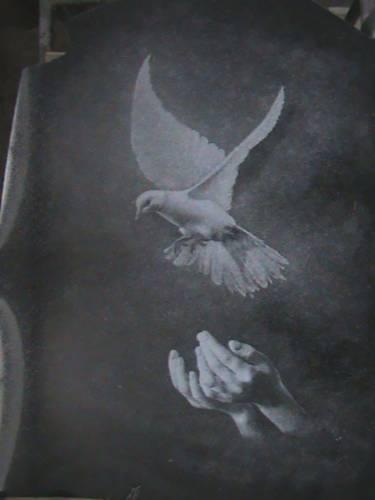 картинки голуби для оформления